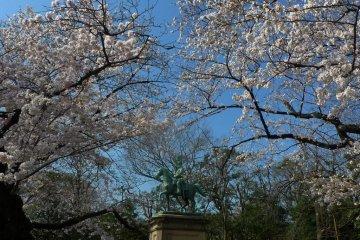 Taman Ueno di Musim Sakura