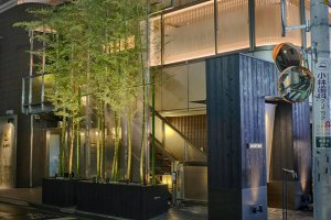 Bamboo trees light up Omotesando