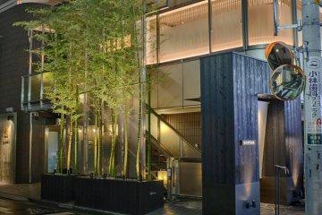 Bamboo trees light up Omotesando