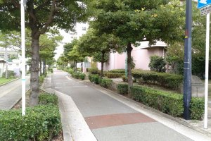 O bairro é residencial e de fácil locomoção, a pé ou de bicicleta