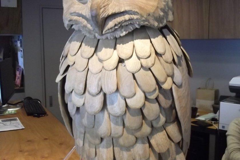 Meg the wise owl
