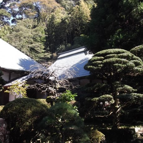 Temple Togeppo Saioku-ji à Mariko
