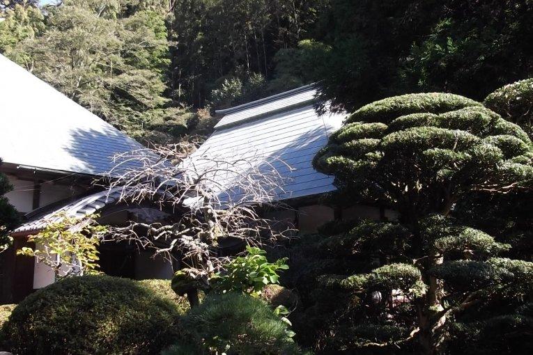 Togeppo Saioku-ji Temple in Mariko