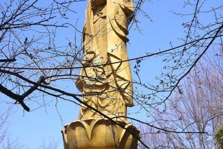 Храм Каннон Усита-яма