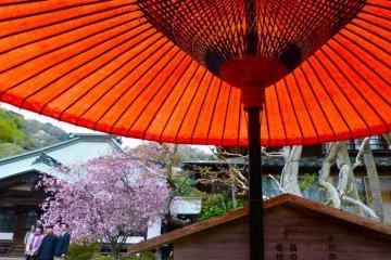 가마쿠라 가이조지(海蔵寺)