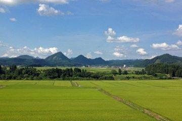 Bốn mùa ở Kaneyama