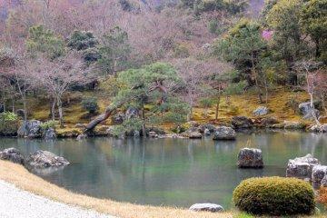 Đền Tenryu-ji, Kyoto