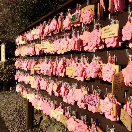 さくら咲く櫻木神社