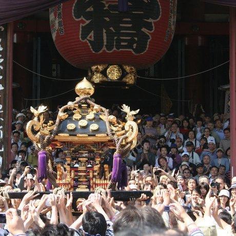 เทศกาล Sanja Matsuri ที่อะสะคุสะ
