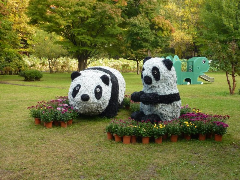 Cute panda displays and flowers at the Hirosaki Botanical Gardens