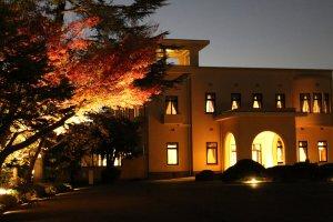 Magnifique vue du musée de nuit