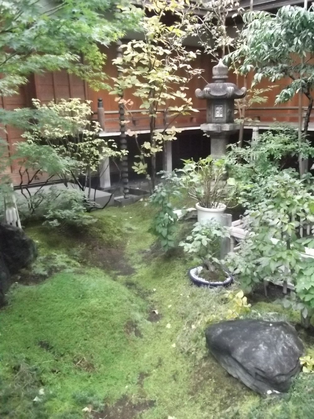 The very small but very pleasant temple garden