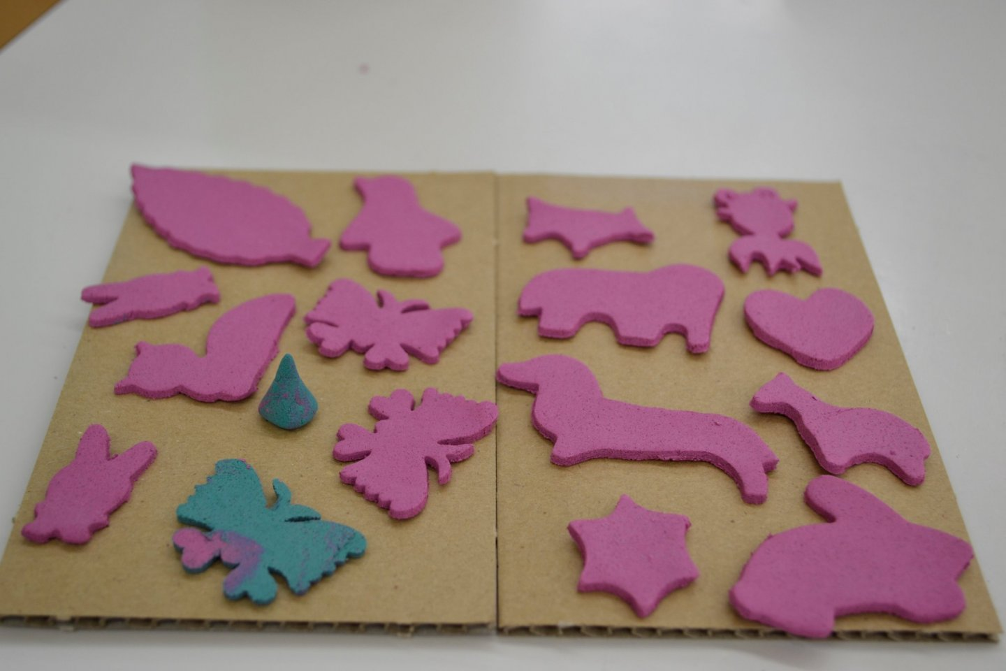 Our final products made from the cookie cutter