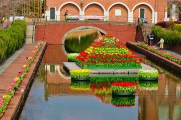 Клумба с тюльпанами посреди канала