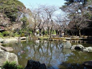 รงลานกว้างมีม้านั่งอยู่หลายตัวจัดวางใต้ต้นซากุระ ซึ่งหากคุณแวะมาที่นี่ในช่วงปลายเดือนมีนาคมถึงต้นเดือนเมษายน ลานกว้างหน้าสวนจะเป็นจุดฮานามิที่ดีงาม