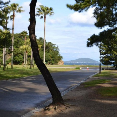 Odo Park in Fukuoka City