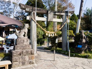 To get to the spring, you first pass under these torii gates