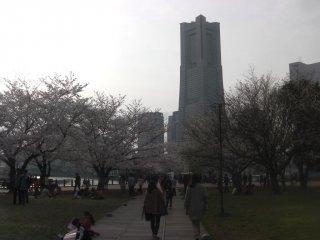Approaching Minato Mirai