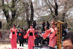 Sakura Festival Dancers