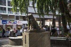 Patung Hachiko di Shibuya