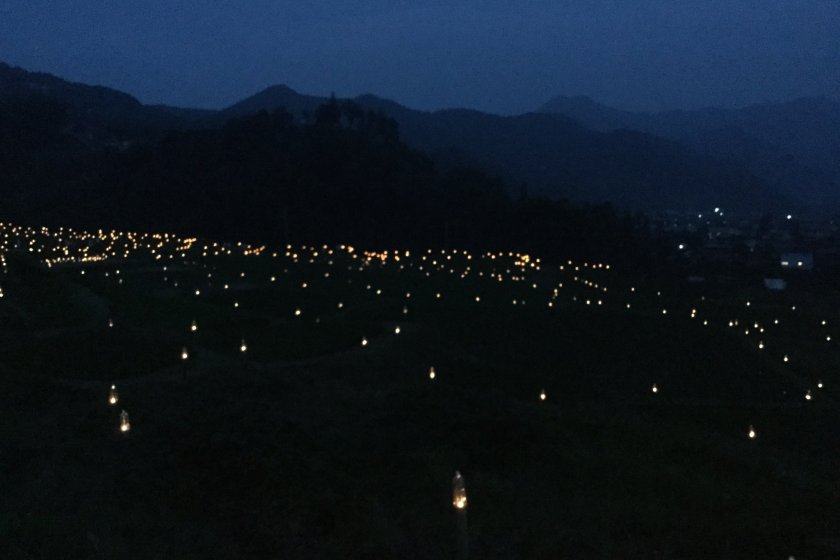 Glow Festival 2020 Terasaka Firefly Festival 2020   July Events in Saitama   Japan Travel
