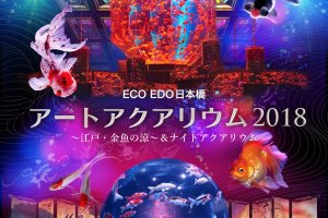 ECO EDO 日本桥2018