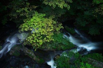 The stream running through Higashiyama onsen