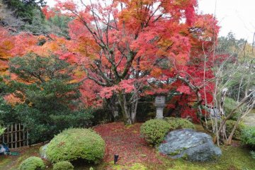 <p>Book a Japanese style room here and this will be part of your view</p>