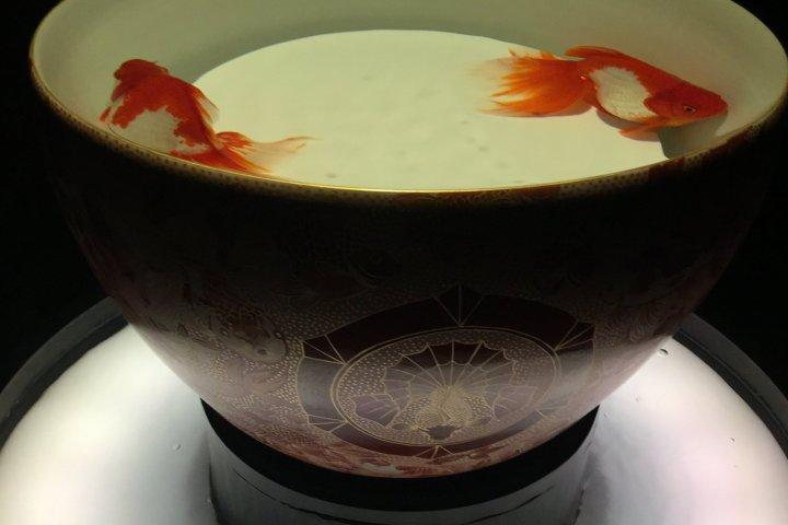 Triển lãm nghệ thuật thủy sinh 2018