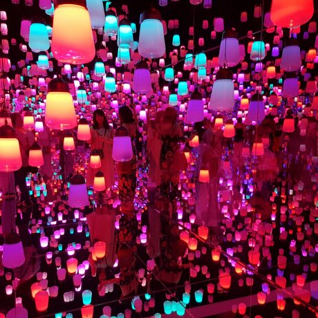 A Visit to TeamLab Borderless