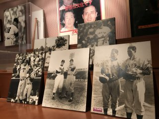 Bats, balls, baseball cards and prints are all on display