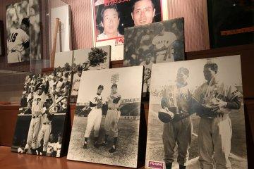 Bats, balls, baseball cards and prints are all on display