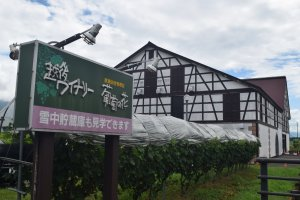 The festival centers around the winery premises