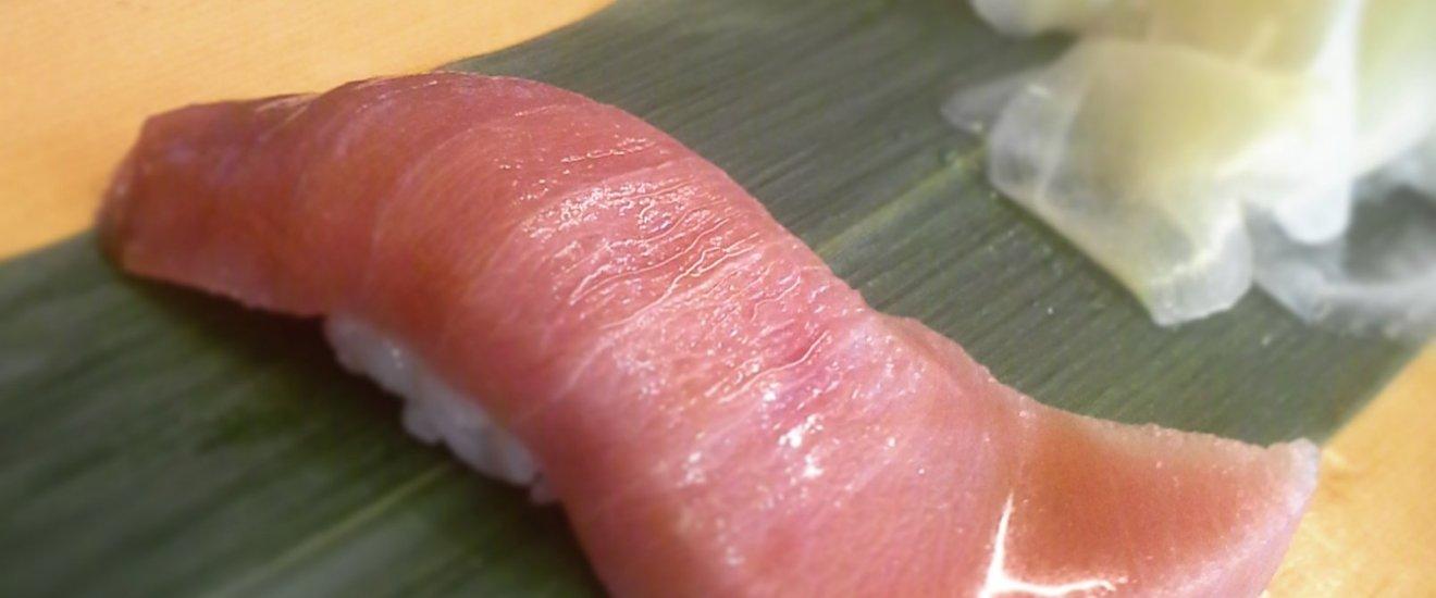 Fatty tuna (chutoro)