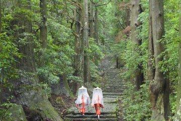 Adventuring in Kumano