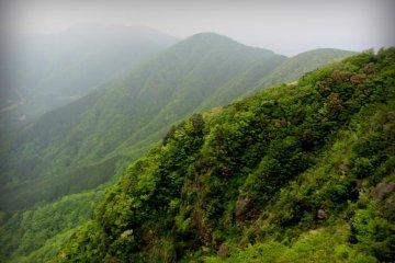 Leo núi Kintoki mùa xuân