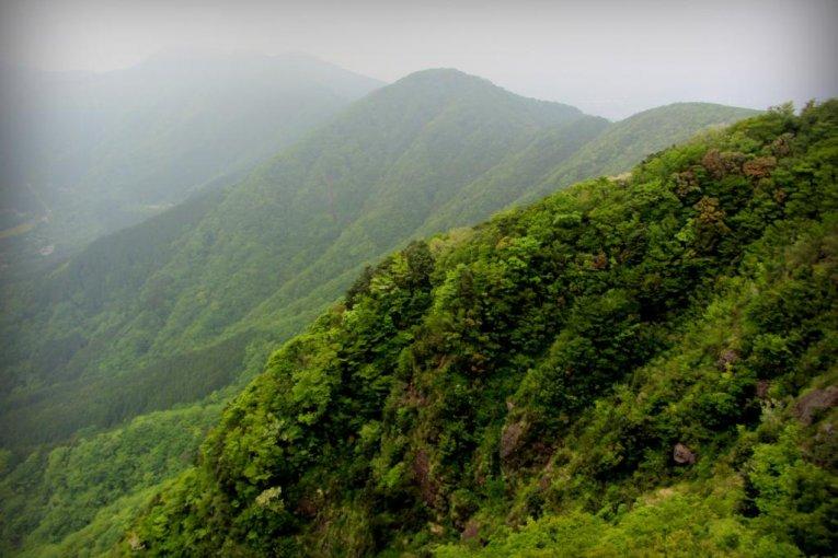A Spring Hike up Mt. Kintoki