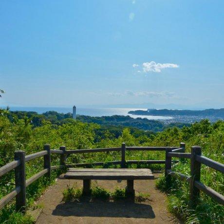 Kamakura Kinubariyama Hiking Trail