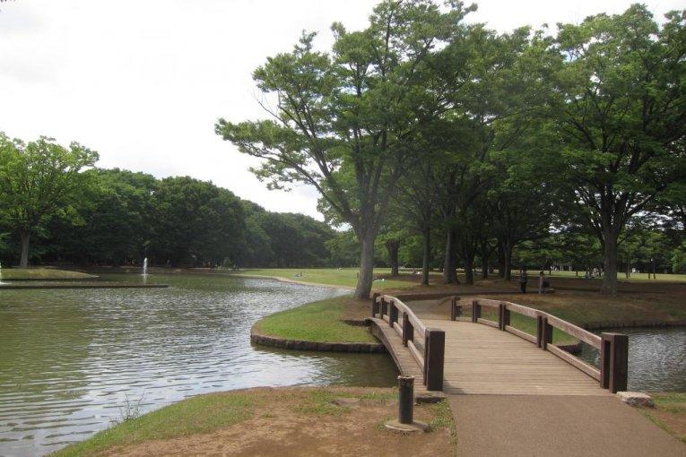 A Day at Yoyogi Park