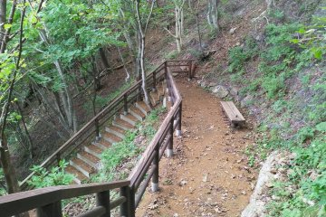 Part of the 360 steps down to the water