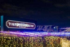 งานประดับไฟโตเกียวแห่งนี้ใช้หลอดไฟกว่า 8 ล้านดวง