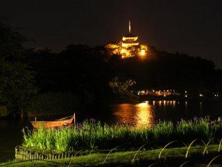 Chụp ảnh về đêm! Khung cảnh ban đêm ở Vườn Sankeiein thật đẹp, đặc biệt là với những đóa hoa diên vĩ đang xòe nở.