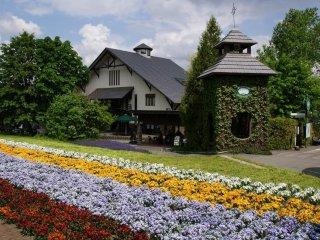 Farm Tomita in Naka-Furano