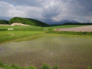 The countryside of Furano