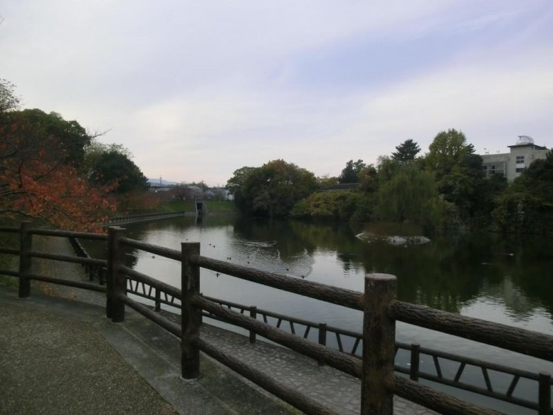 Koriyama castle moat