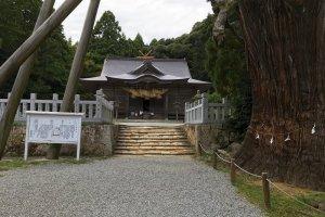 Tamawakasu-mikoto Shrine and the Yao-sugi