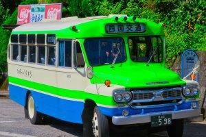 Oboke Bus Tour