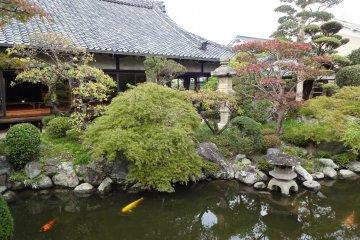 Beautiful Enkutei garden
