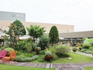 영화관 층의 정원