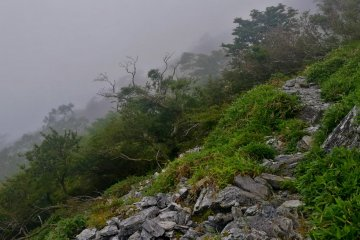 Rocky path leading to the summit